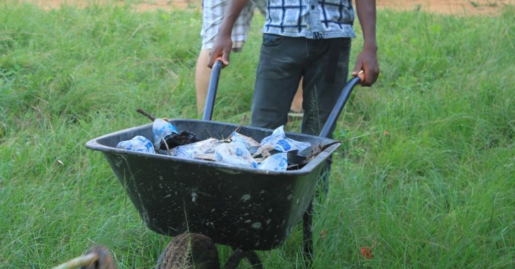 Sanitation Day